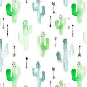 Watercolor cactus illustration indian summer theme with arrows in blue and green for boys