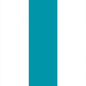 Turquoise_ColorBlock