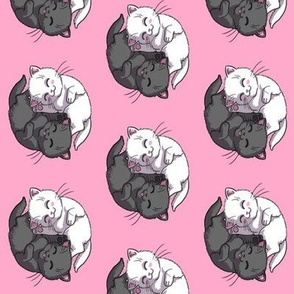 Black And White Yin Yang Kittens on Pink