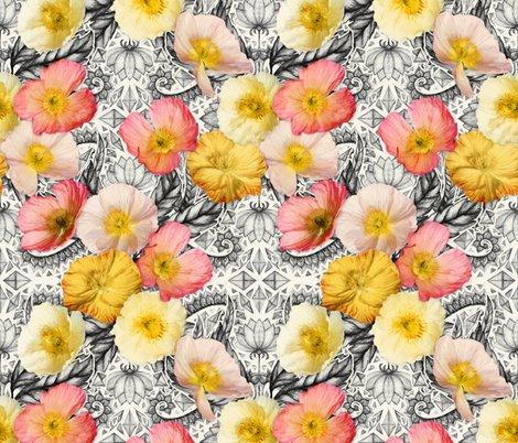 Rrrrrpainted_poppy_pattern_base_spoonflower_shop_preview