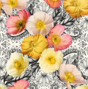 Rrrrrpainted_poppy_pattern_base_spoonflower_shop_thumb