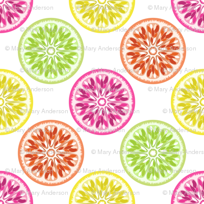 Citrus Slices Colorful on White