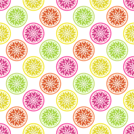Citrus Slices Colorful on White fabric by anderson_designs on Spoonflower - custom fabric