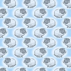 Guinea pig dots - blue