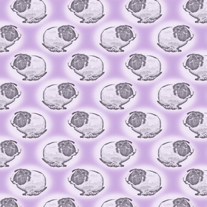 Guinea pig dots - purple