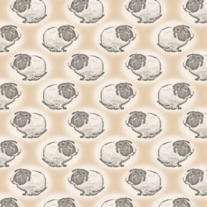 Guinea pig dots - tan