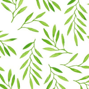 willow - Green