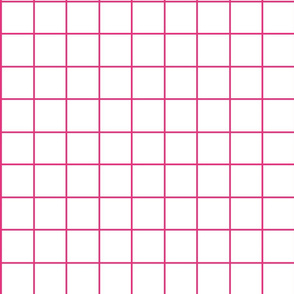 fuschia_and_white_grid