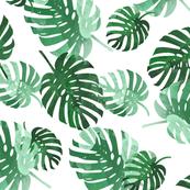 palm_springs