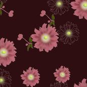 anemone_wine-red