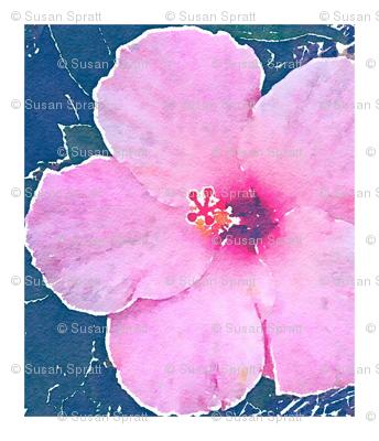 Large Pink Hibiscus