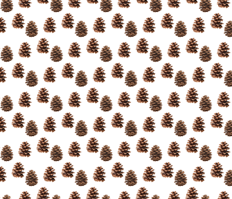 Pine Cones on White fabric by argenti on Spoonflower - custom fabric