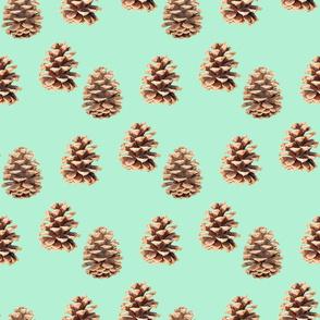 Pine Cones Mint
