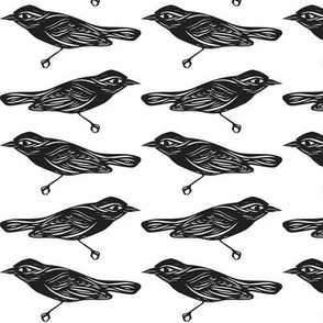 Bird Cutouts in Black and White, Pacing