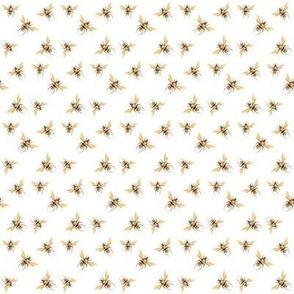 Honey Bee Golden, Small