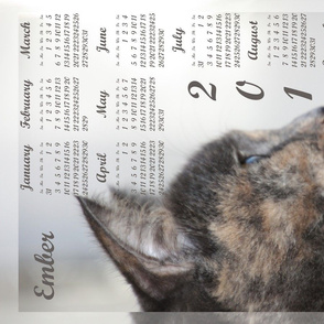 tea towel calendar 2016 cat 2