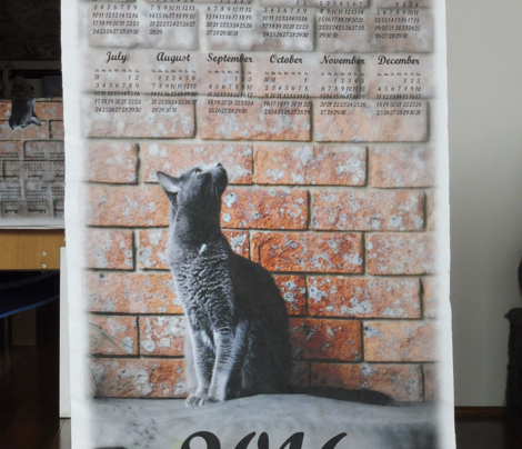 tea towel calendar 2016 grey cat
