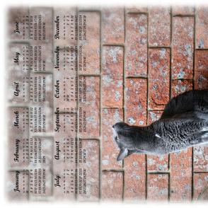 tea towel calendar 2016 grey cat