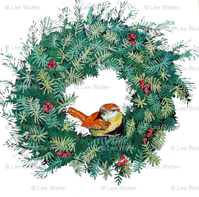 Rrcarolina_wren_and_wreath_ed_preview