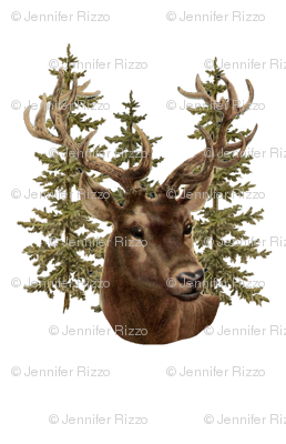 Stag and pine