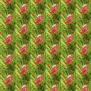 4697769_Christmas_Pine_Cones-rs