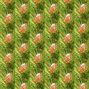 4697819_rChristmas_Pine_Cones-rs
