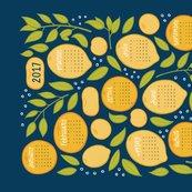 R2017_citrus_tea_towel_27x18-04_shop_thumb