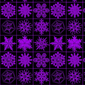 snowflakesblkpurple
