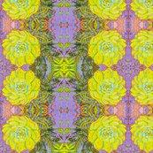 Cactus_2_4500_shop_thumb