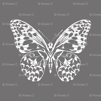Mono Winged