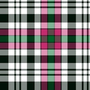 Borthwick dress tartan