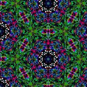 Kaleidoscope 2-3