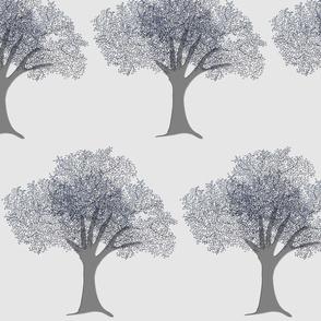 Danita's Gray Trees