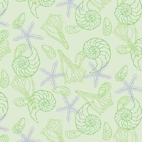 Starfish, Seashells on Green