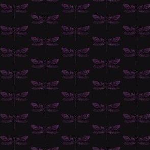 libellula VIOLA