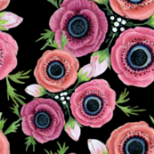 boho Anemone Floral Watercolor