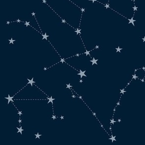 stars in the zodiac constellations on navy blue