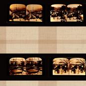 Stereoscope Plaid