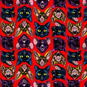 Cats, Bats and Rats!