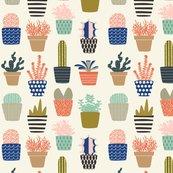 Succulents-01_shop_thumb