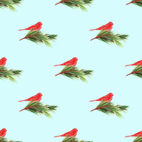 Watercolor winter bird