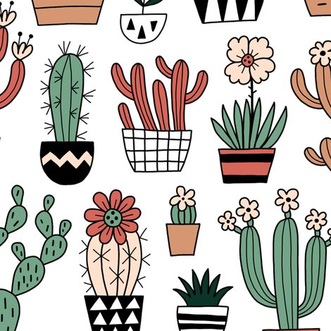 Rblooming_succulents_shop_preview