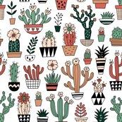 Rblooming_succulents_shop_thumb