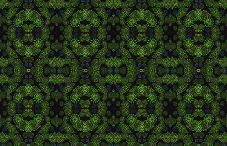 Green_Floral_ fabric by connie_sickler on Spoonflower - custom fabric