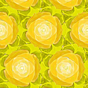 Yellow Cabbage Rose