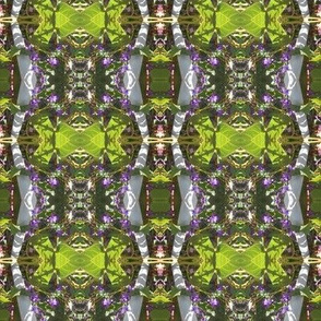 The Garden Dragon's Green Bon Bons (Ref. 4715)