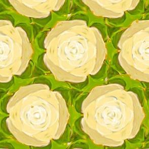 Cream Colored Cabbage Roses