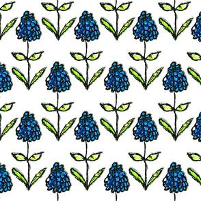 Grape Hyacinths for Spring (medium)
