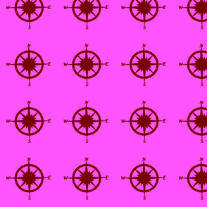 Compass_Only_117_282