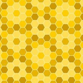 04748940 : R6Vi 96 : honey